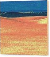 Great Lakes Dunes B Wood Print