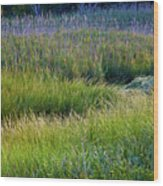 Great Marsh Grass Wood Print