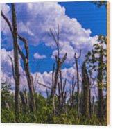 Great Meadow Wood Print