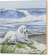 Great Pyrenees At The Beach Wood Print