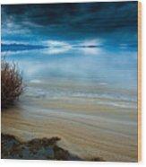 Great Salt Lake Shores Wood Print