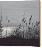 Great Salt Pond Wood Print