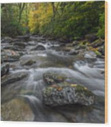 Great Smoky Mountains. Wood Print by Itai Minovitz