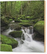 Great Smoky Mountains Roaring Fork Wood Print