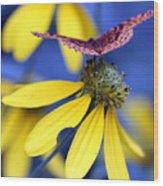 Great Spangled Fritillary On Yellow Coneflower Wood Print
