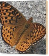 Great Spangled Fritterlary Wood Print