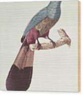 Great Touraco Wood Print