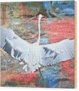 Great White Egret Landing Wood Print