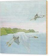 Great White Heron 1 Roger Bansemer Wood Print