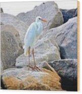 Great White Heron Of Florida Wood Print
