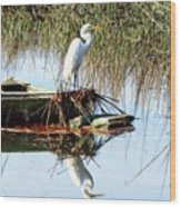 Great White On Row Boat Wood Print