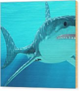 Great White Shark With Sunrays Wood Print