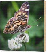Great Wings Wood Print