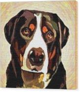 Greater Swiss Mountain Dog Wood Print
