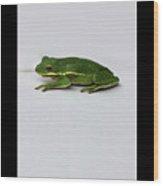 Gree Tree Frog 2016 With Black Border Wood Print