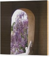 Greece Wisteria Through Arched Window Wood Print
