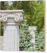 Greek Ionic Columns Wood Print