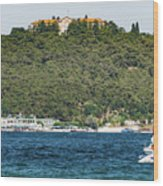 Greek Orthodox School And The Sea Of Marmara Wood Print