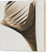 Greek Urn Wood Print