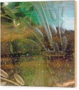 Green 17 Wood Print