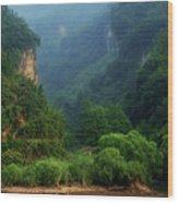 Green Along The Yangtze Wood Print