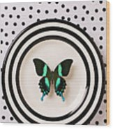 Green And Black Butterfly On Plate Wood Print