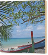 Green And Blue Boat Wood Print