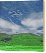 Green And Blue Landscape Wood Print