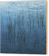 Green And Blue Serenity - Smooth Wetland Morning Wood Print