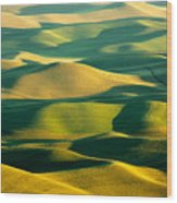 Green And Gold Acres Wood Print