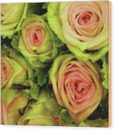 Green And Pink Rose Bouquet Wood Print