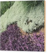 Green And Purple Wood Print
