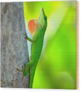 Green Anole Wood Print