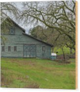 Green Barn #2 Wood Print