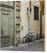 Green Bike And Door Wood Print