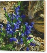 Green Blue And Burlap Wood Print
