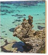 Green Blue Ocean Water And Rocks Wood Print