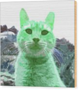 Green Cat Wood Print