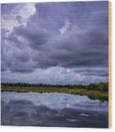 Green Cay Storm 8 Wood Print