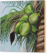 Green Coconuts- 01 Wood Print