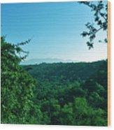 Green Cover Wood Print