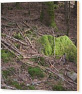 Green Covered Rock Wood Print
