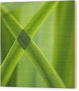 Green Crossing Wood Print by Silke Magino