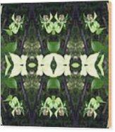 Green Dogwood Wood Print