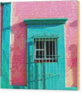 Green Door By Darian Day Wood Print