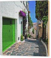 Green Door Passage  Wood Print