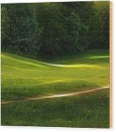 Green Dream Wood Print