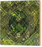 Green Emerald And White Diamond Brooch Distortion Aa H A Wood Print