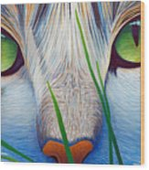 Green Eyes Wood Print by Brian  Commerford