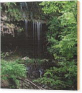 Green-falls Wood Print